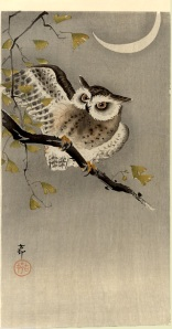 Owl on ginkgo branch (Scops owl under crescent moon) by Ohara Koson