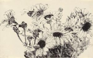 Daisies by Avigdor Arikha