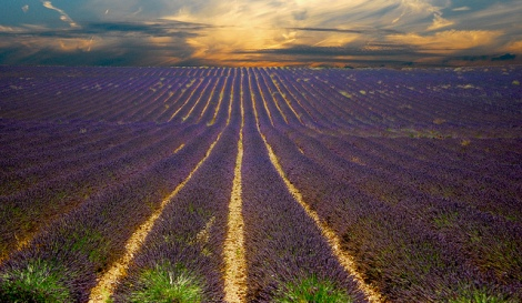 A Lavender Sunset [Oh what a Re-post!] by Vincent Brassinne, on Flickr