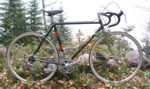 This what my first real bicycle looked like.