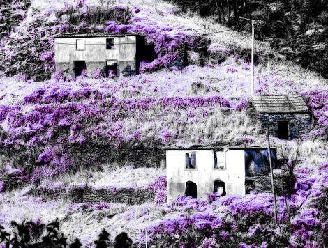 A photo from Madeira manipulated by me.