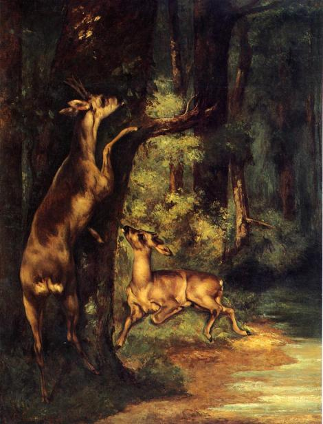 Male and Female Deer in the Woods by Gustave Corbet