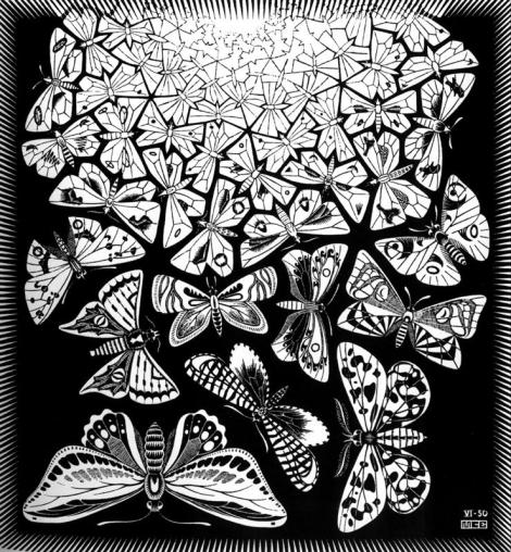 Butterflies by M.C. Escher