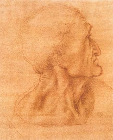 Study for the last supper -  Judas by Leonardo da Vinci