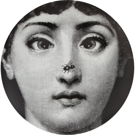 Theme & Variations Decorative Plate #363 (Bee on Nose) by Fornasetti
