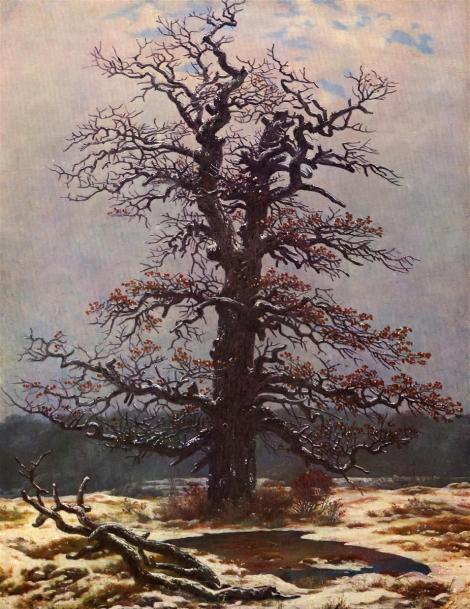 Oak tree in the snow by Caspar David Friedrich
