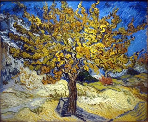 The Mulberry Tree by Vincent van Gogh