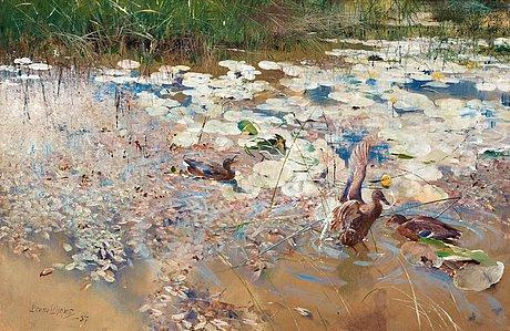 Ducks by Bruno Liljefors