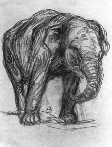 Elephant by Franz Marc